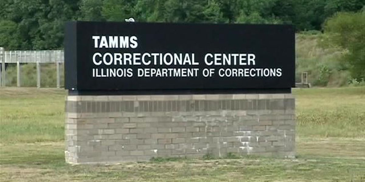 Bill would study reopening Tamms Correctional Center as minimum security facility