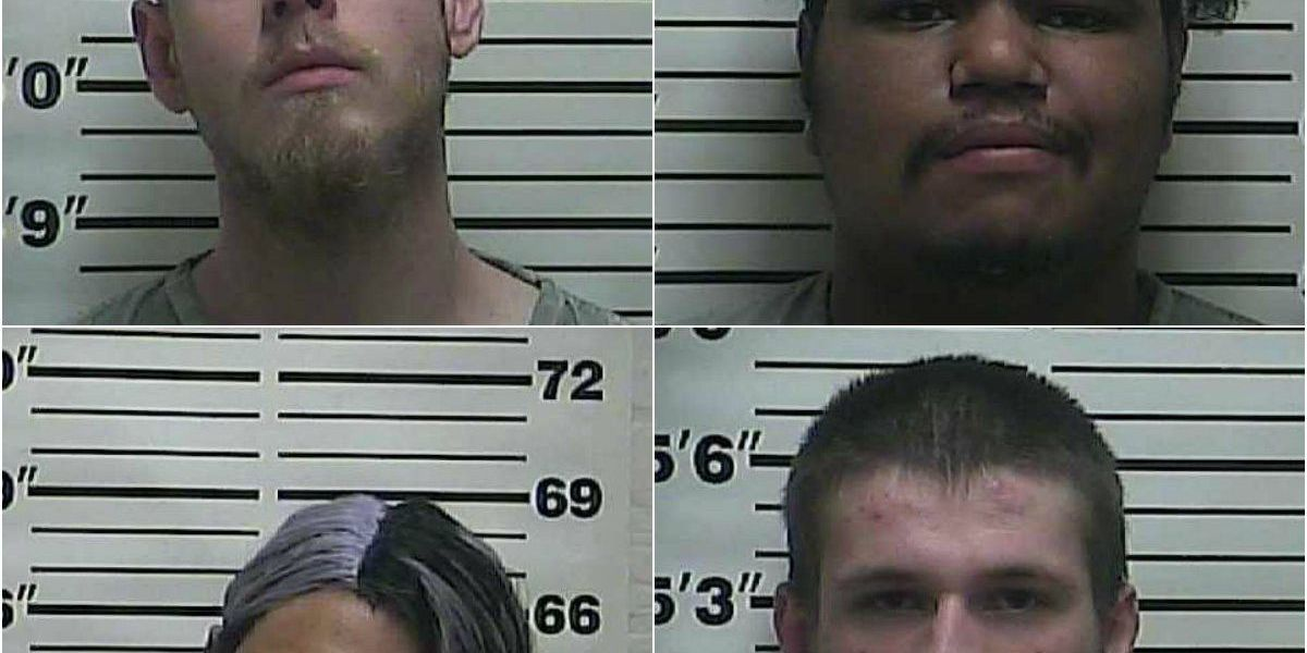 Meth lab busted, four arrested in Martin, TN
