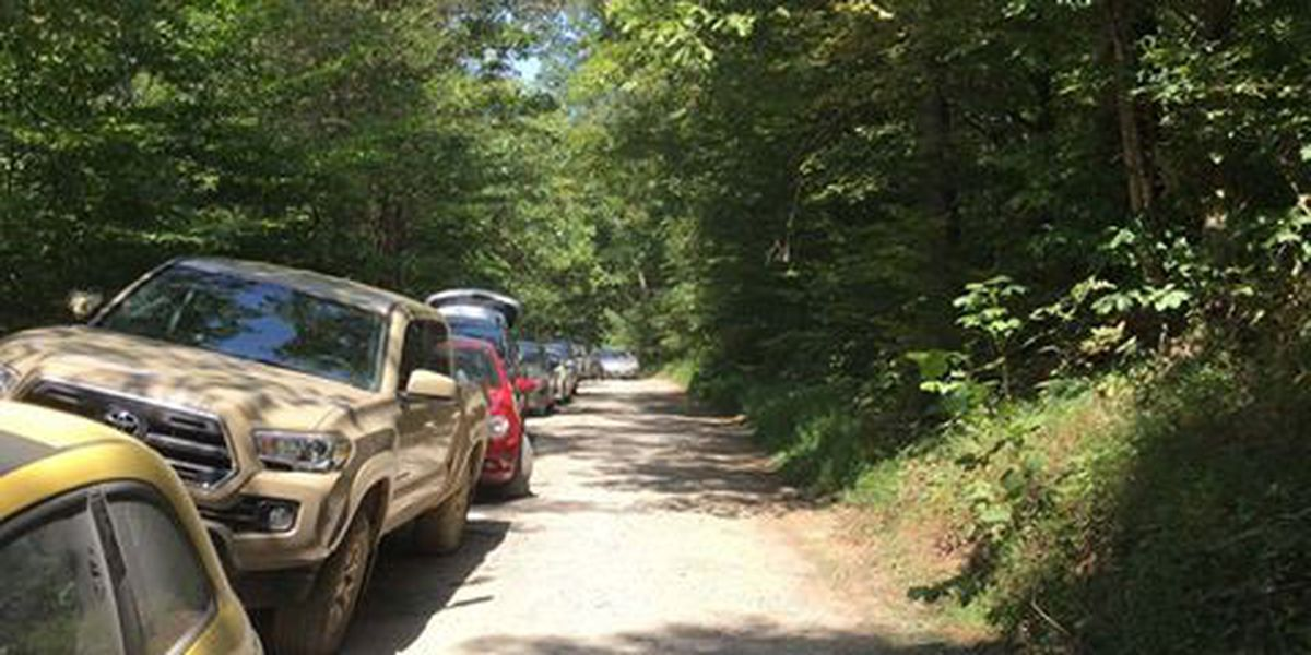 Shawnee National Forest closes areas due to traffic