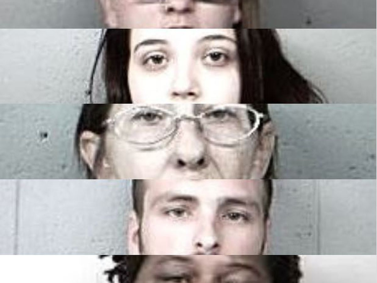 5 arrested in ongoing drug investigation in Perry Co., IL