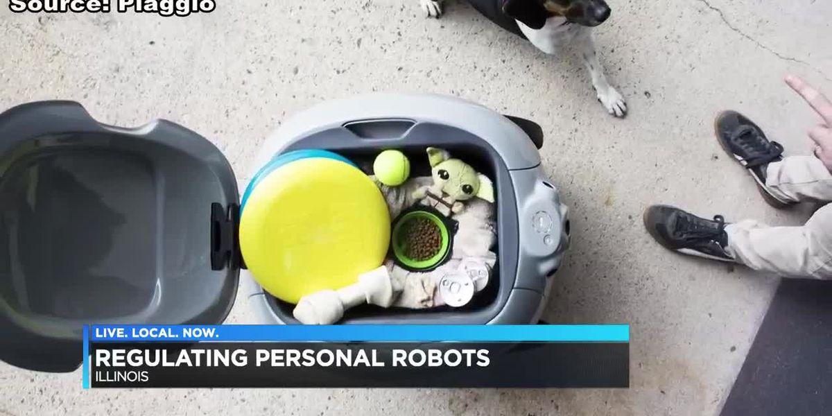 Regulating person robots in IL