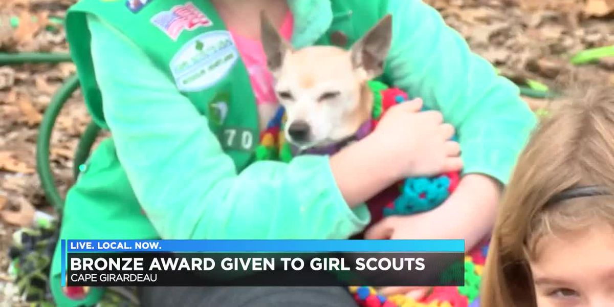 Local Girl Scouts get bronze award