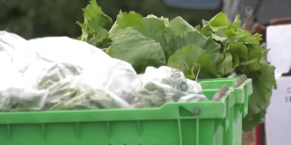 Carbondale winter indoor farmers market to open Dec. 5, online option now available