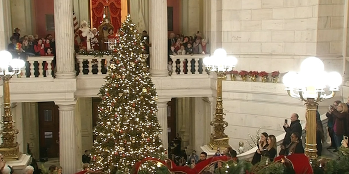 Artificial Christmas tree lights up controversy
