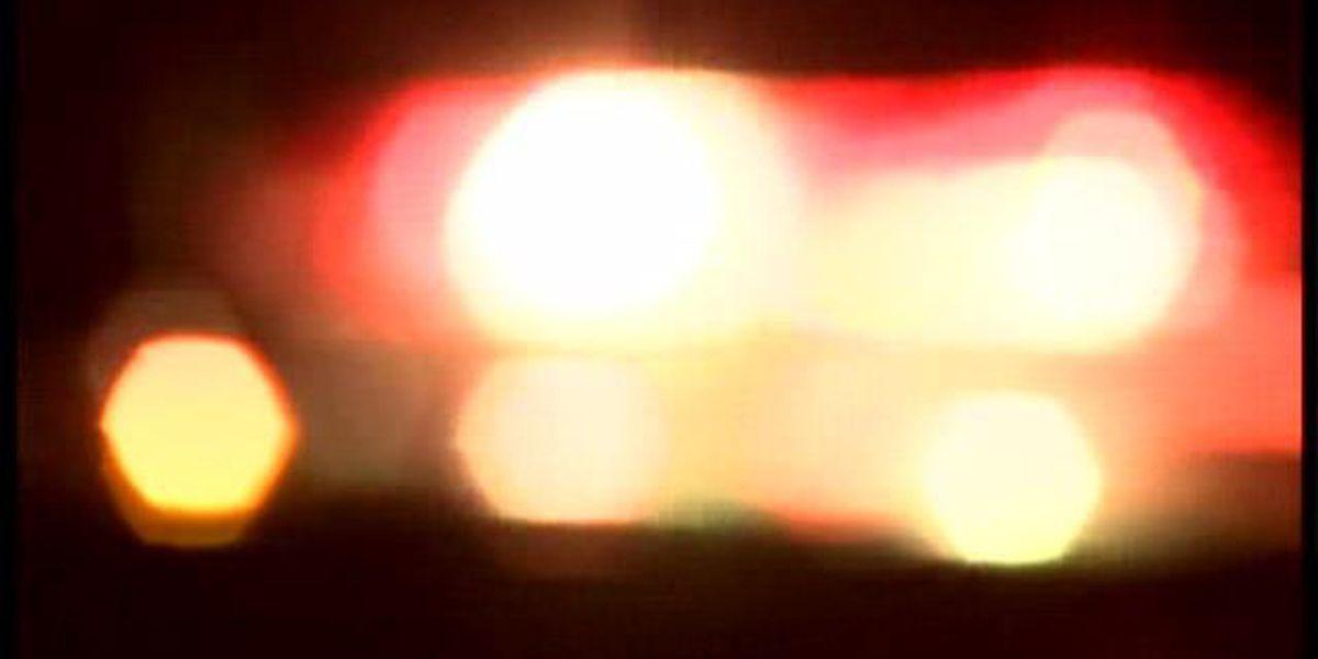 2 fugitives arrested during traffic stop in Graves Co., KY