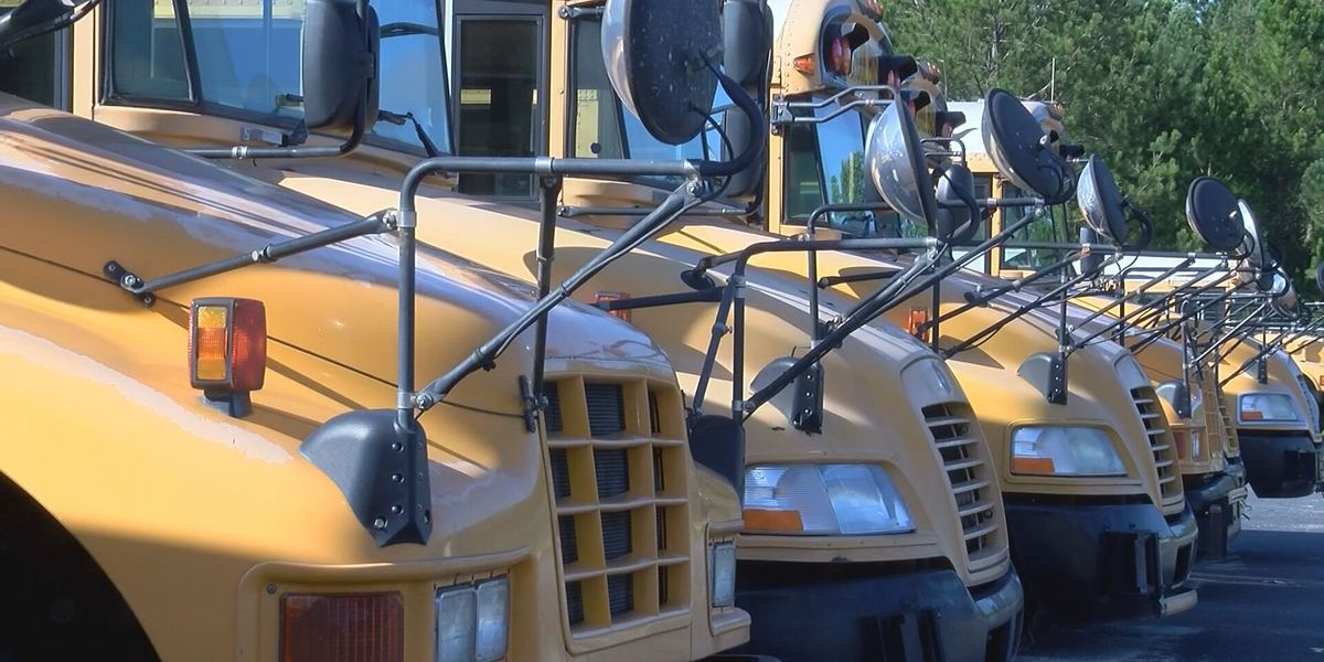 Meal delivery for Cobden, Ill. students to begin Tuesday