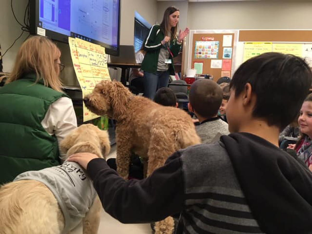 Therapy dogs help students in the classroom in Perryville