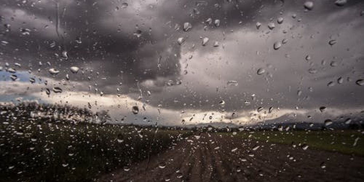 First Alert: Soggy weather expected the next few days