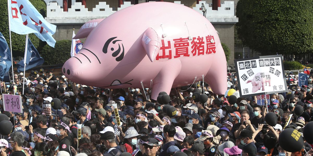 Thousands march in Taiwan against US pork imports