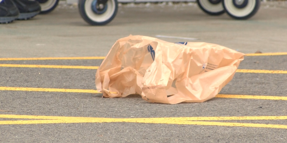 IL Gov. Pritzker proposes tax on plastic bags