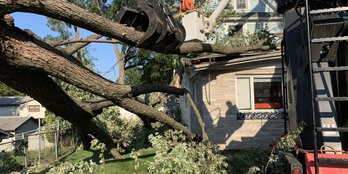 Heartland tree service company helps with storm relief in Iowa and Louisiana