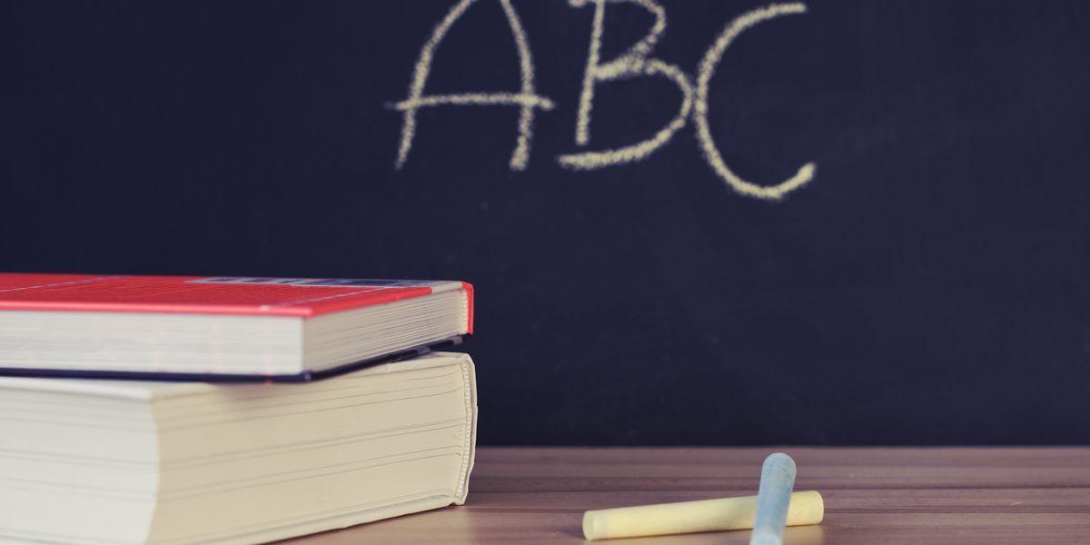 CES District #95 celebrates 'Commendable' school designations