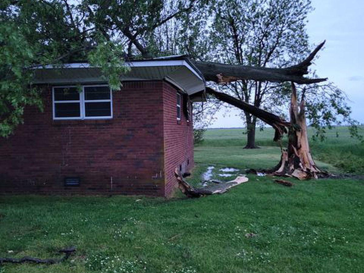 NWS: Evidence of EF0 tornado near Hayti, Mo.