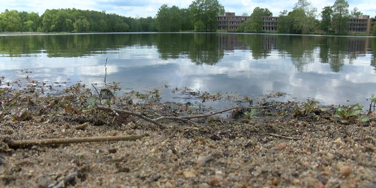 SIU receives startup grant to study algae blooms