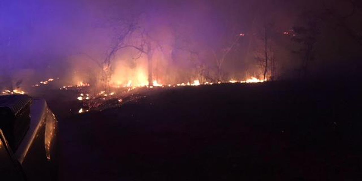 Fire at Mark Twain National Forest investigated as possible arson