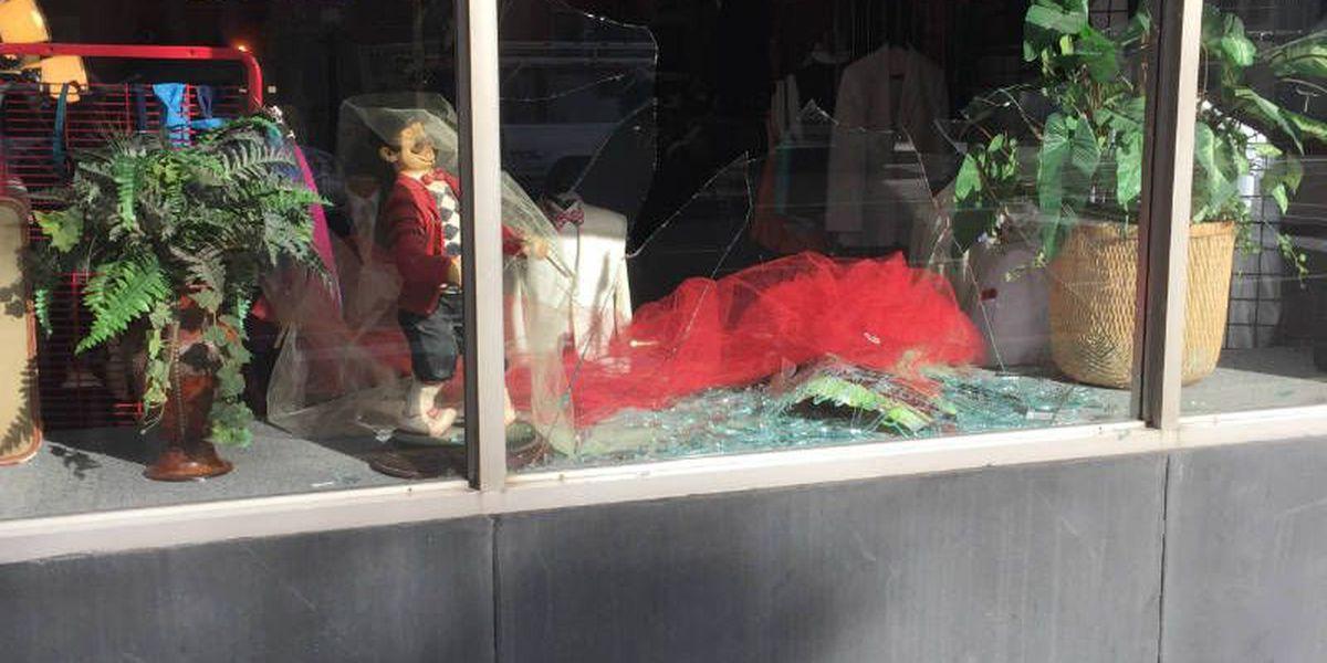 Turkey crashes through Paducah store window