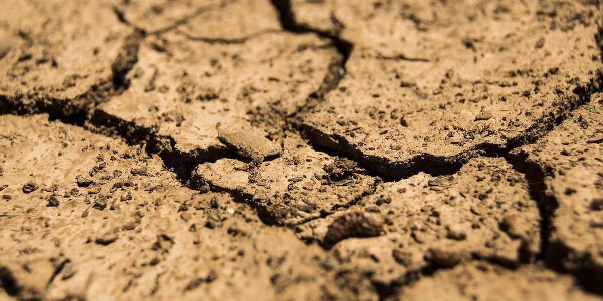 Soil, water conservation practices damaged by spring flooding eligible for relief