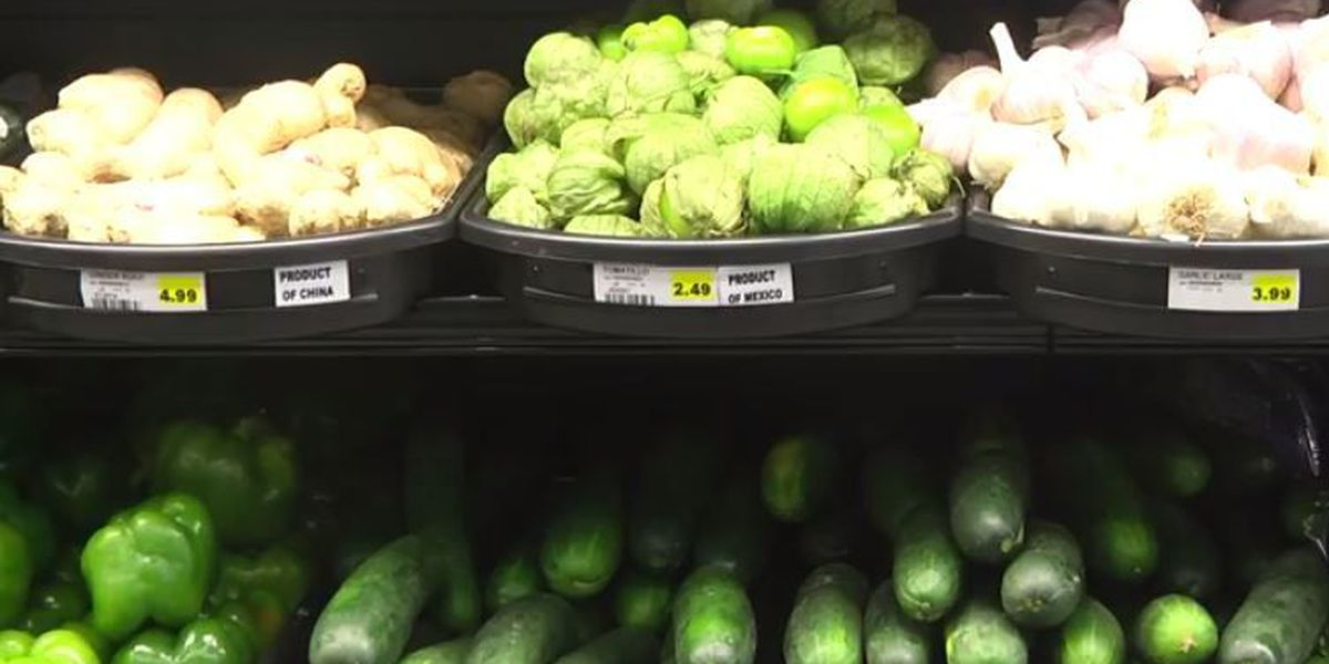 Cairo, IL considered food desert for lack of healthy food options