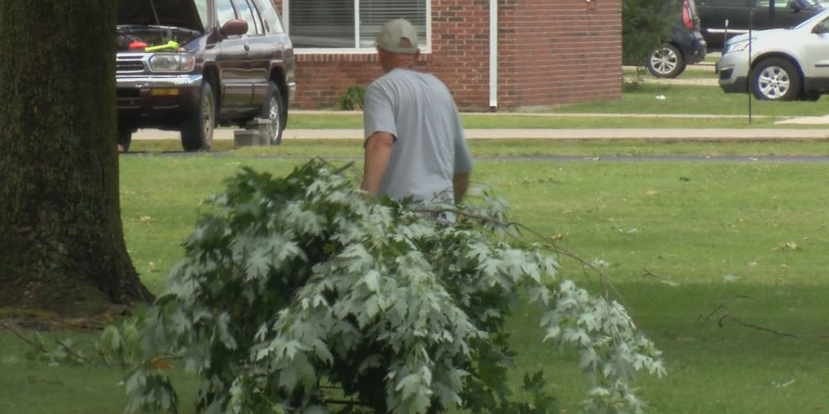 Dexter neighborhood bands together to cleanup after damaging storm