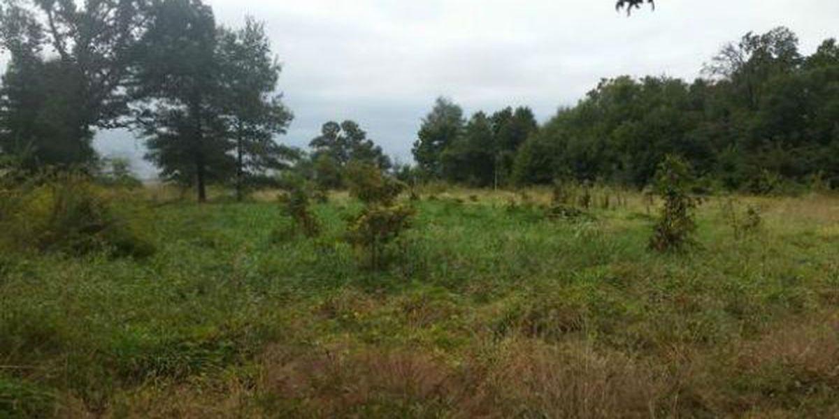Missouri Dept. of Conservation seeks public input on Oak Ridge Conservation area