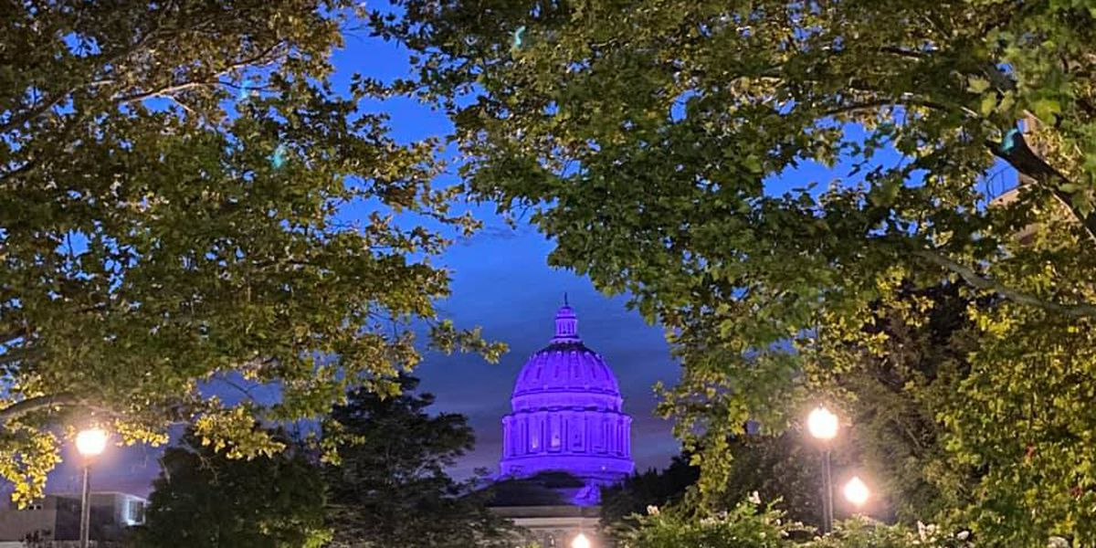 Gov. Parson orders Capitol Dome to shine purple in honor of women's suffrage