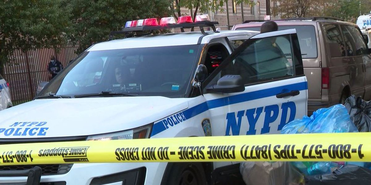 Police: 2 infants found dead outside NYC apartment building