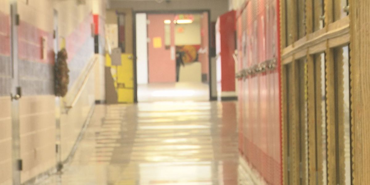 Tax levy extended to pay for school repairs at Meadow Heights