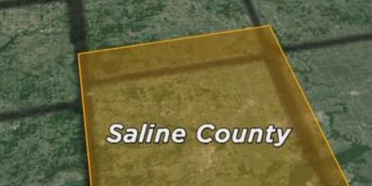 Saline County, IL investigators looking for leads in burglary case
