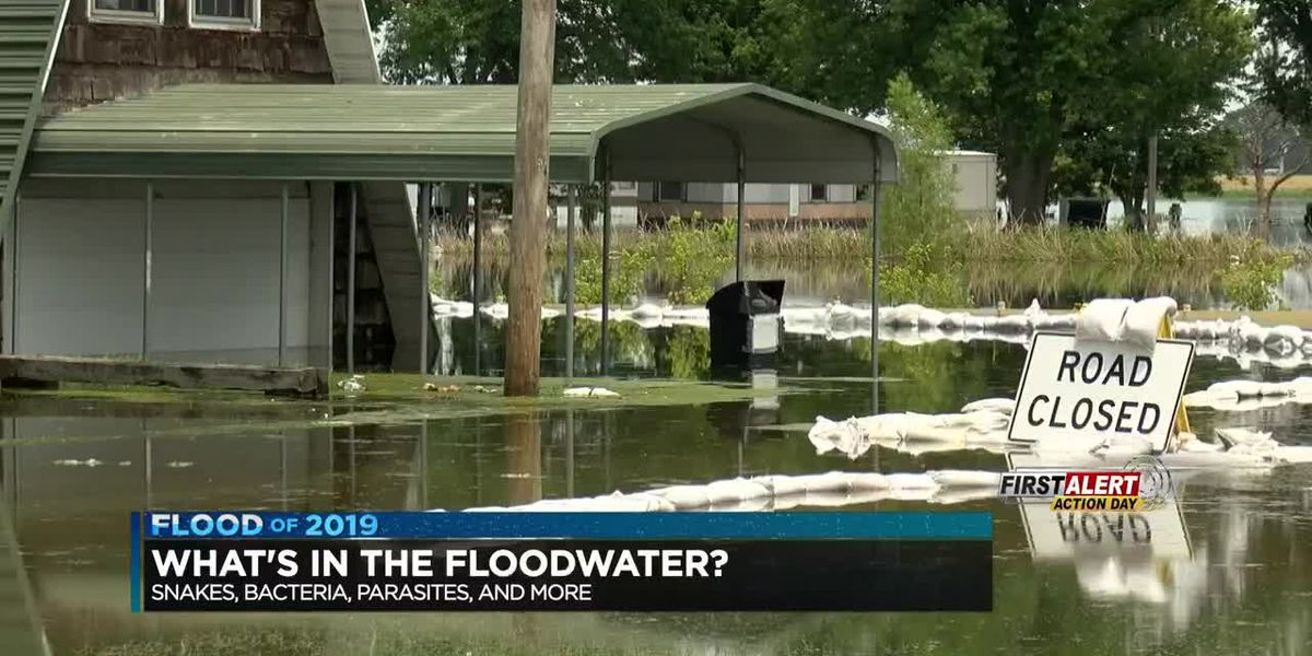 What's in the floodwater?