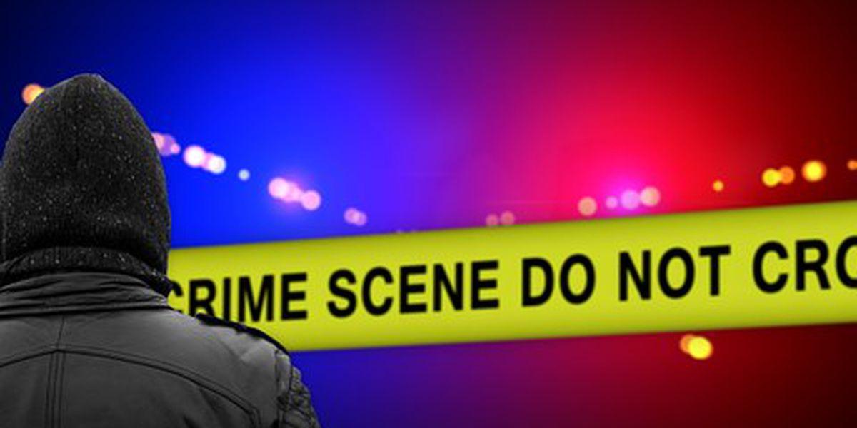 Juveniles accused of multiple burglaries in Murray, KY
