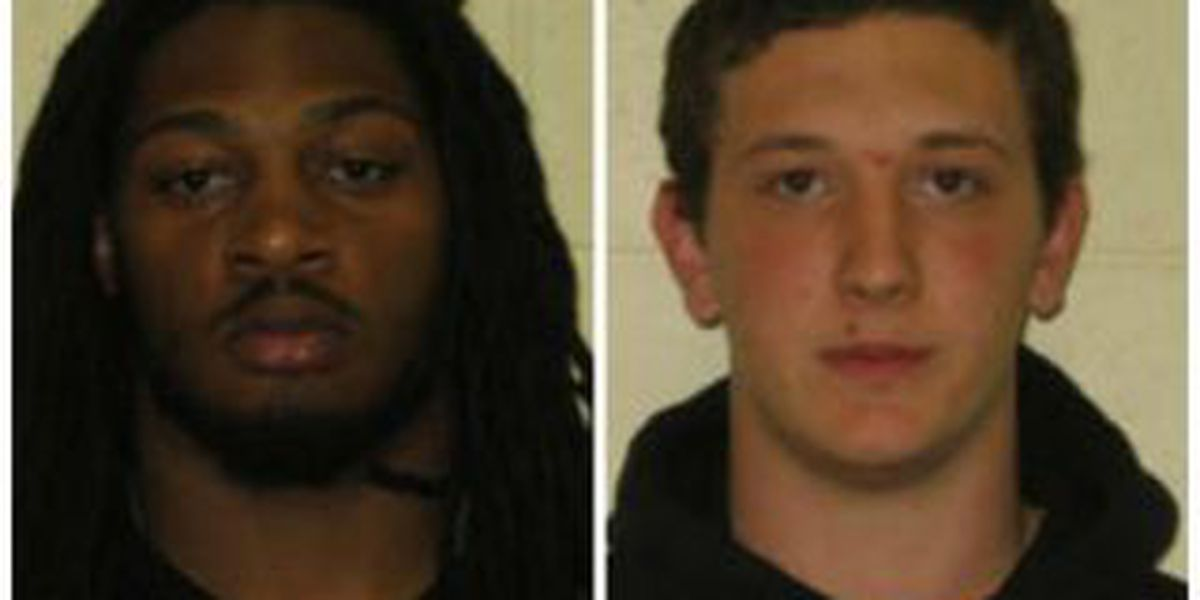 2 from Herrin accused of burglary, theft
