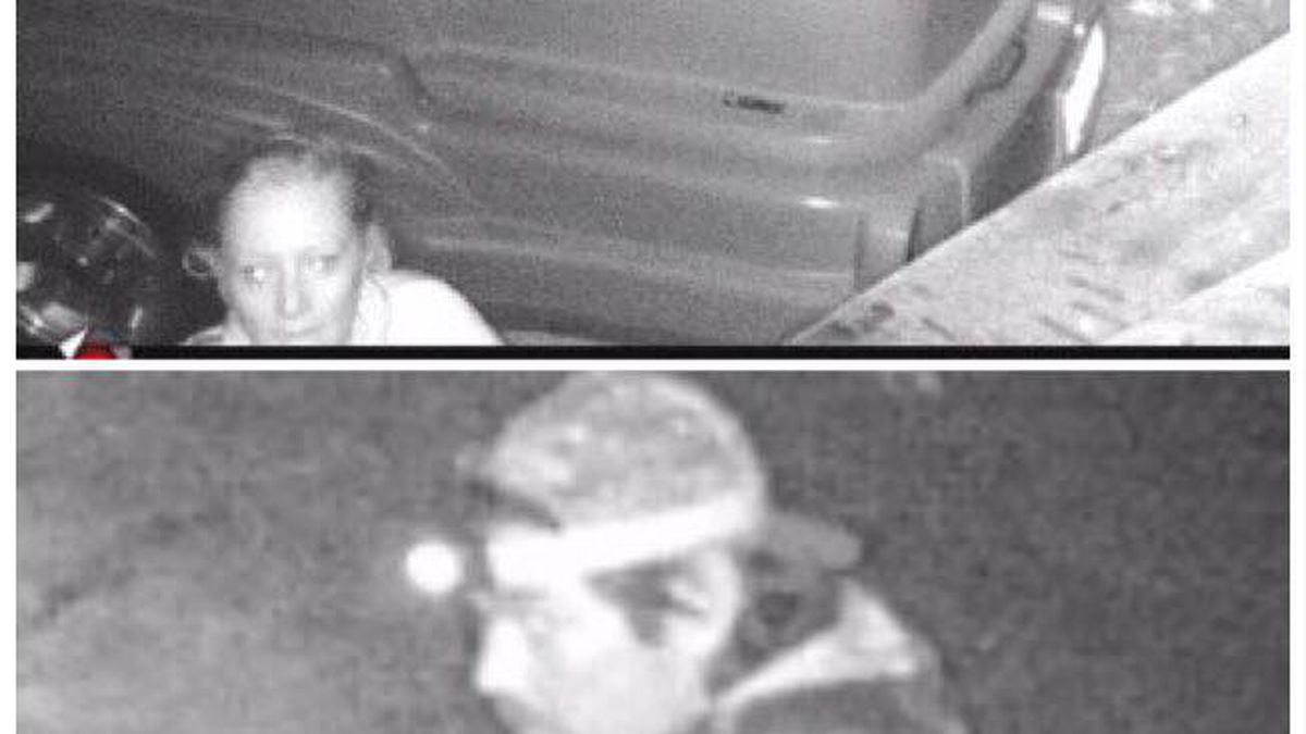 Sheriff's office asks for help identifying 2 persons of interest in theft investigation