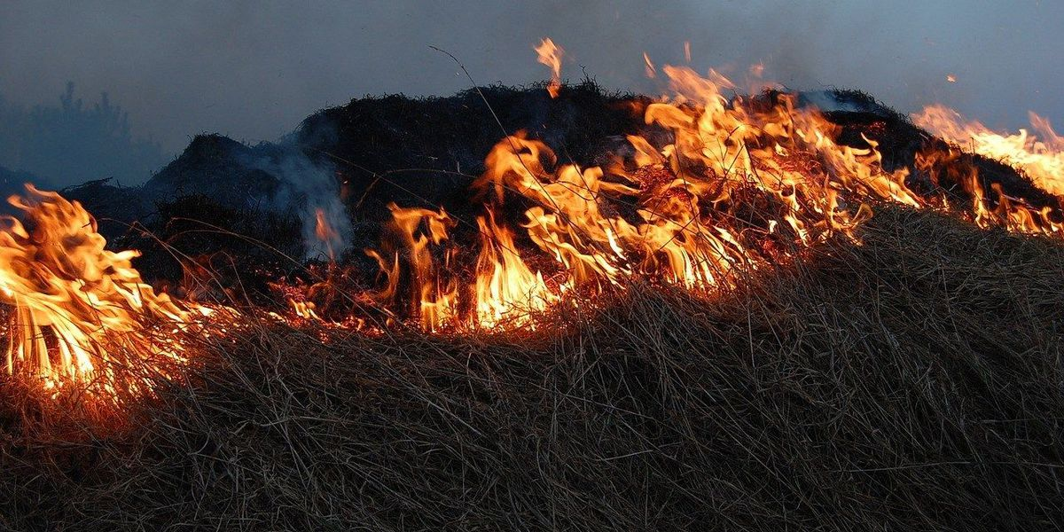 Fire officials warn of dry conditions