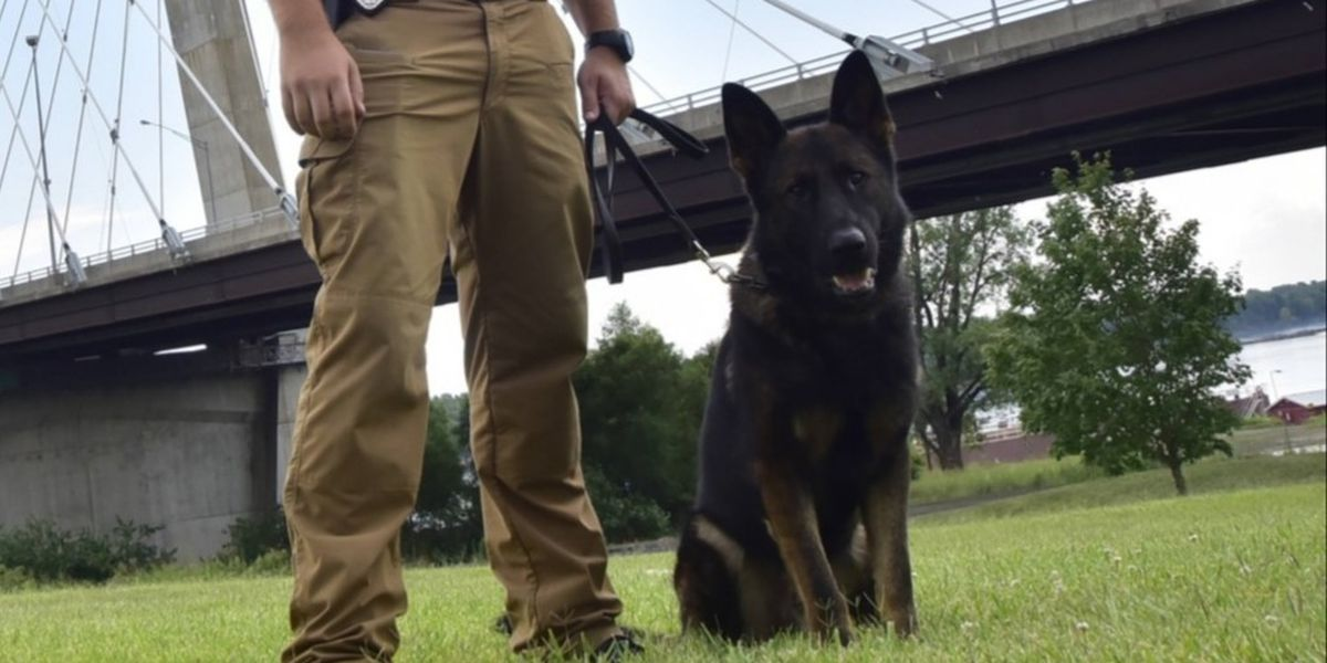 Cape Girardeau police gathered to pay final respects to K-9 Dallas