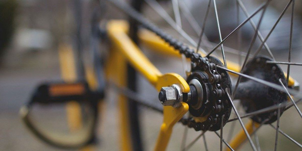 New 5-day bike ride to feature Illinois farms, vineyards