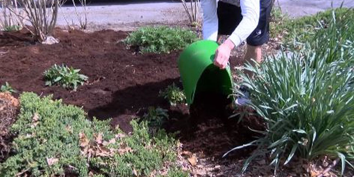 Volunteers needed for Friends of the Park Day in Cape Girardeau