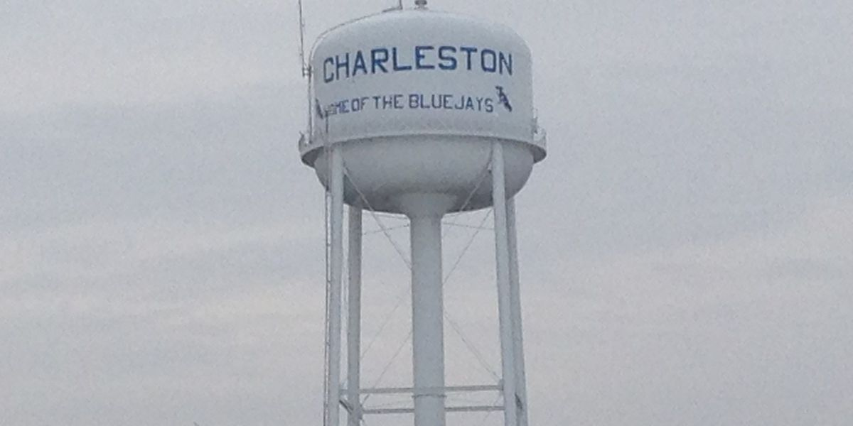Charleston Blue Jays to leave for semifinals