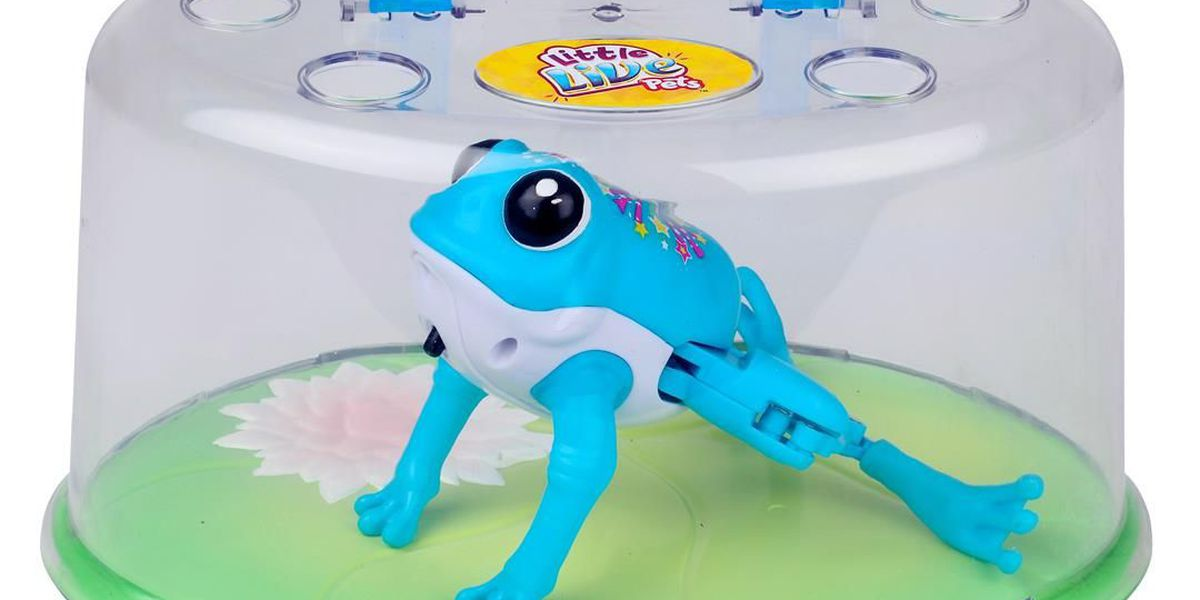 Toy frogs recalled due to chemical, injury hazards