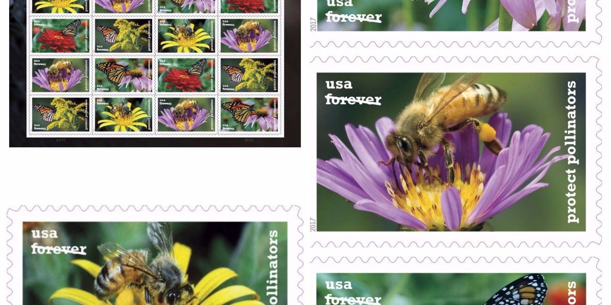 U.S. Postal Service 'abuzz' about new stamps