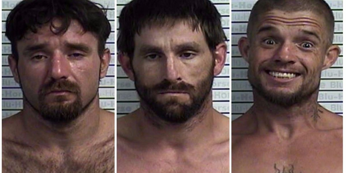 Sheriff: 3 arrested in Graves Co. after drug bust