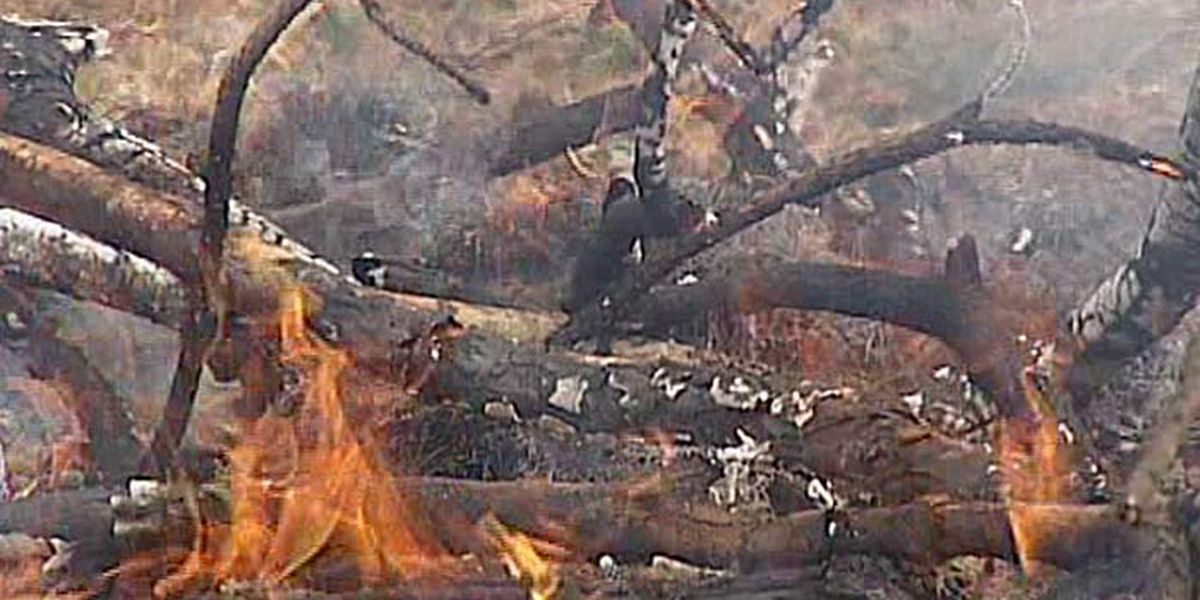 Burn ban issued for Franklin Co., Ill.