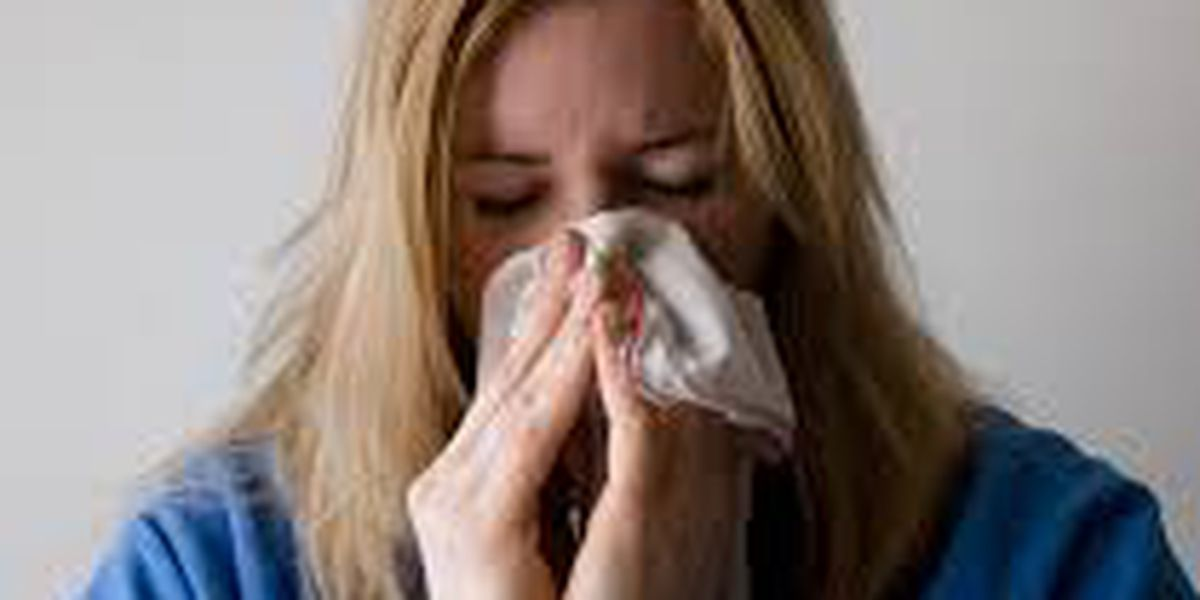 Louisville healthcare providers seeing high cases of flu