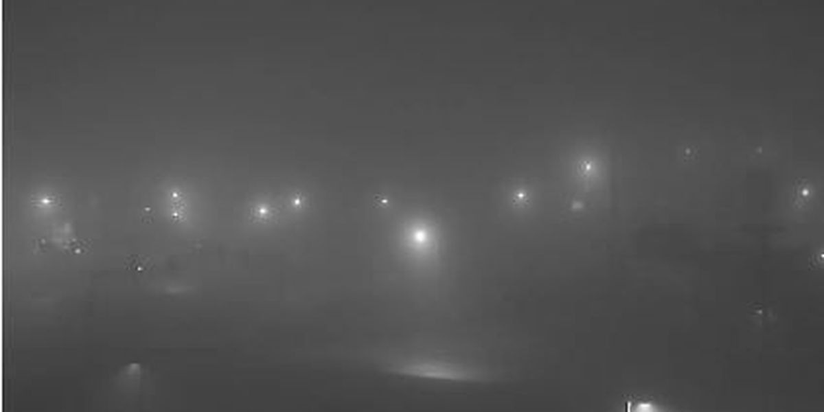 Tips on driving in foggy conditions