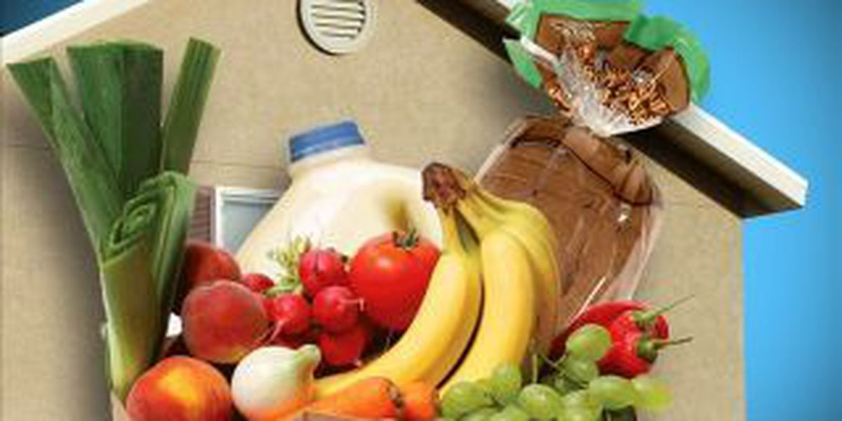IDHS: Assistance for SNAP households affected by tornadoes