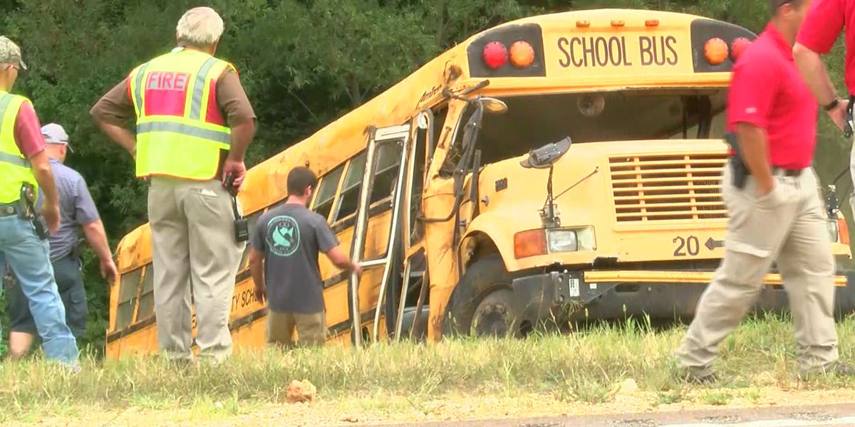 Driver dead, 8 children injured in school bus crash in