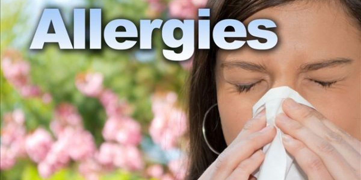 Allergy issues - Healthcare deadline - Wood stove regulations
