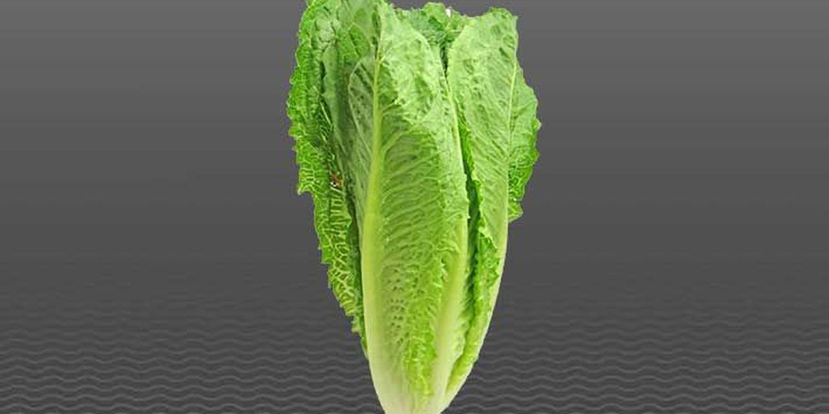 2 IL residents test positive in E.coli outbreak linked to romaine lettuce