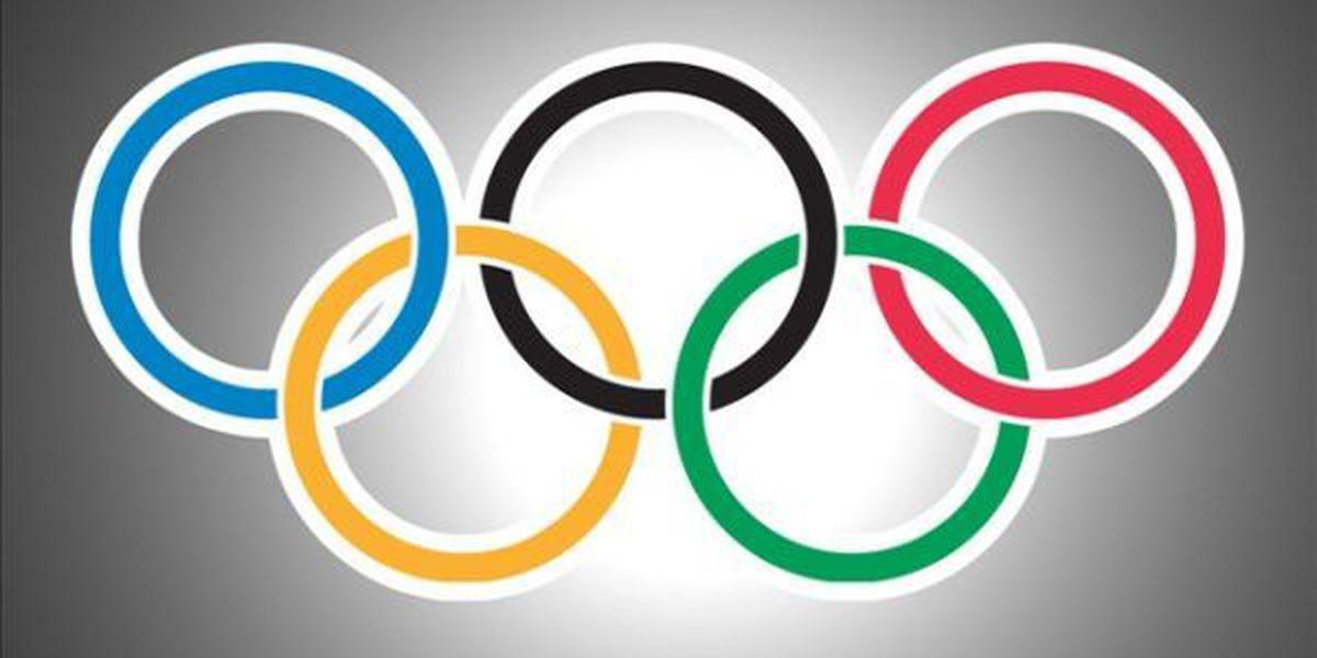 Jaguar killed at Brazilian Olympic Torch ceremony