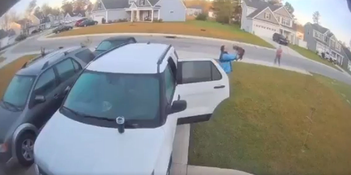 WATCH: N.C. man throws rabid bobcat after it attacks wife in wild video