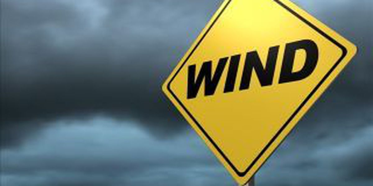 High winds close Dorena-Hickman Ferry